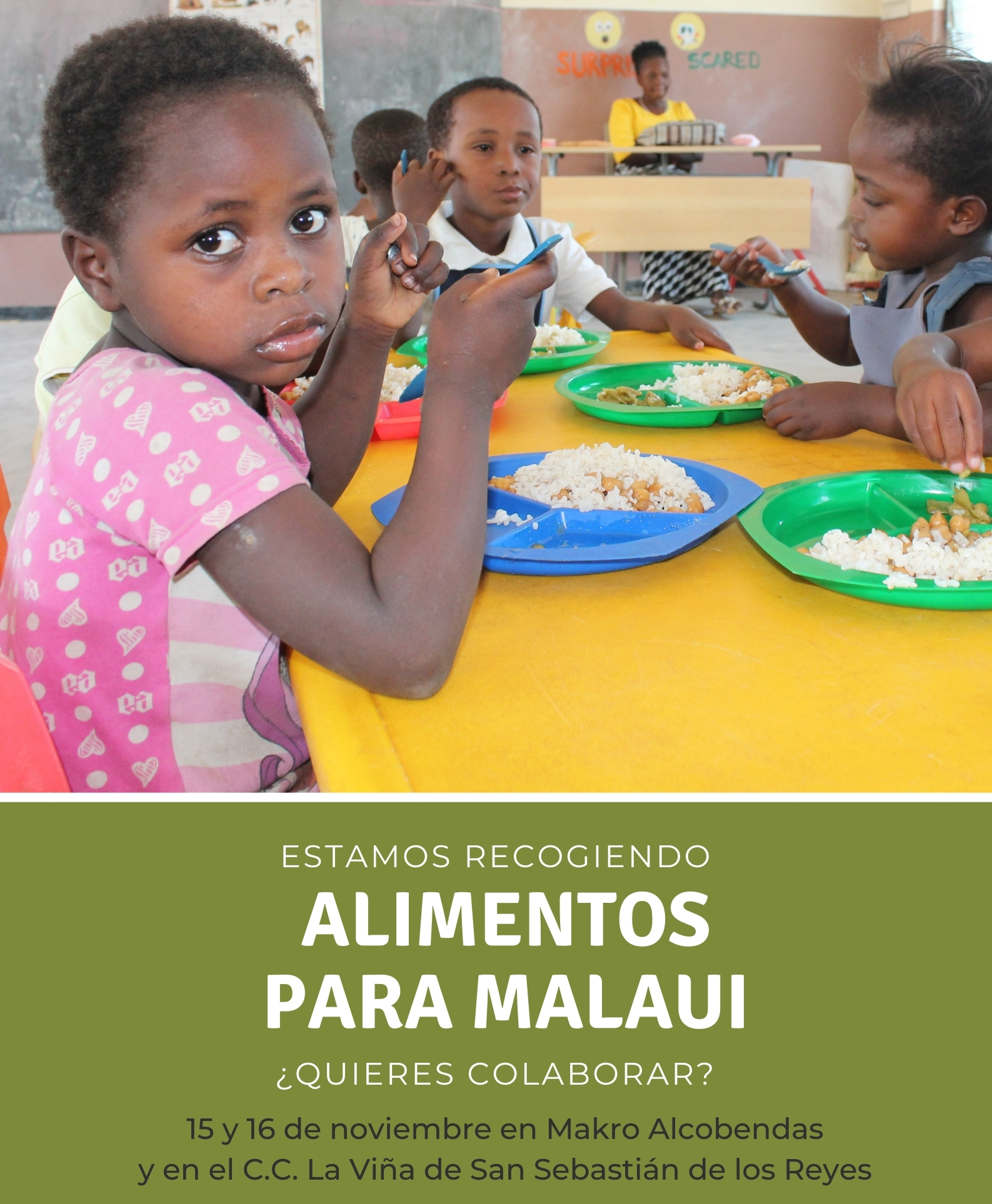 El 15 y 16 de noviembre recogemos «Alimentos para Malaui»