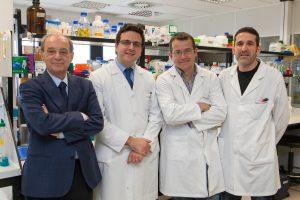 FMLC dona 500.000 € a la investigación para el tratamiento del COVID-19
