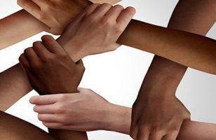 Nos unimos a la #CadenadeSolidaridad de la AEF